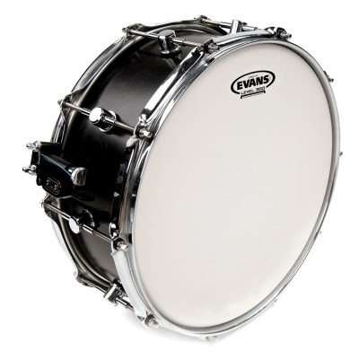 "Evans 12"" Genera HD Coated"