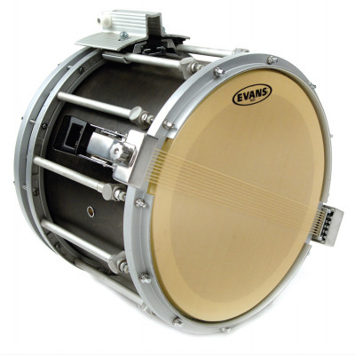 "Evans 13"" MX5 Marching Drum Snare Side Head - Gold Finish"