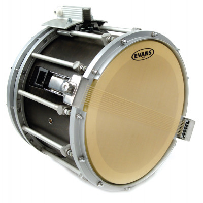 "Evans 14"" MX5 Marching Drum Snare Side Head - Gold Finish"