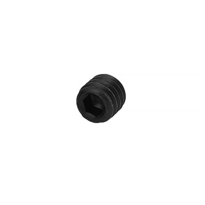 Allen Screw M6 x 6mm
