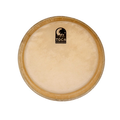 "Toca Synergy and Players Series Replacement Head - 10"" Quinto"