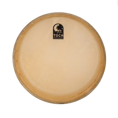 "Toca Synergy and Players Series Replacement Head - 11"" Conga"